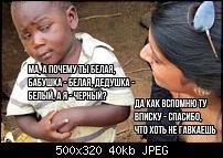 11046507_500.jpg